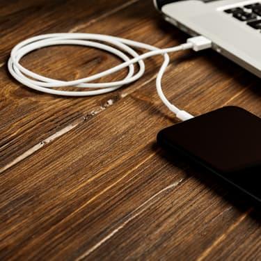 Un simple câble permet d'accéder à toutes les données de l'appareil sur lequel il est branché.
