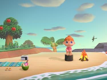 Pourquoi Animal Crossing : New Horizons est parfait pour le confinement ?