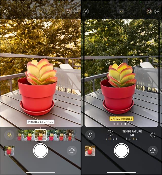 """À gauche : l'application d'un filtre """"Intense et Chaud"""". À droite : le Style Photographique """"Chaud"""", avec un ton """"Intense"""". Deux effets qui sonnent pareil mais n'ont de tout évidence rien à voir..."""