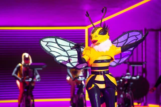 L'Abeille dans Mask Singer sur TF1.