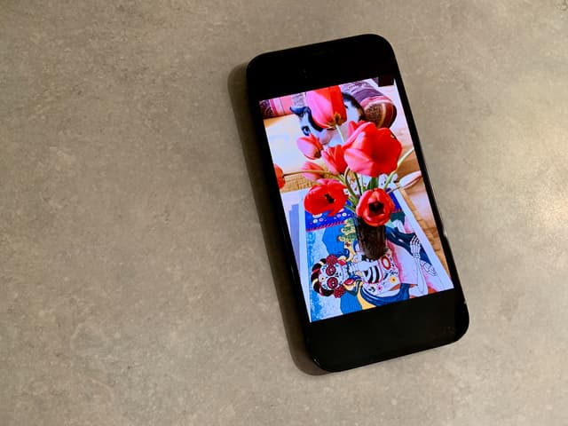 L'écran OLED Super Retina XDR de l'iPhone 12 Pro offre des couleurs éclatantes et contrastées.