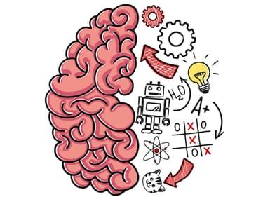 On a testé Brain Test : casse-têtes, un jeu de réflexion hyper addictif