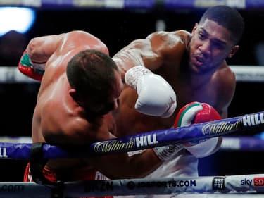 Boxe : les champions Anthony Joshua et Tyson Fury vont bientôt s'affronter