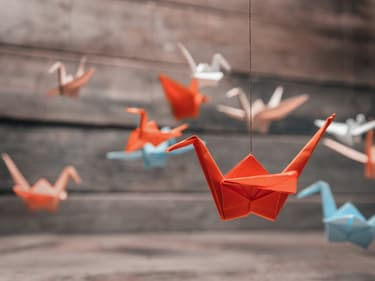 Apprenez à faire des origamis en famille sur SFR Kids Récré