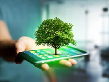 Semaines du Développement Durable chez SFR : écologie et économies