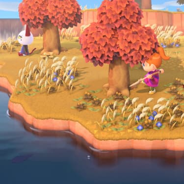 Animal Crossing : comment faire pousser l'arbre à clochettes ?
