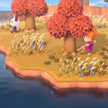 Animal Crossing : comment faire pousser l'arbre à clochettes ?