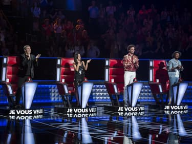 The Voice : ces stars pourraient être coachs