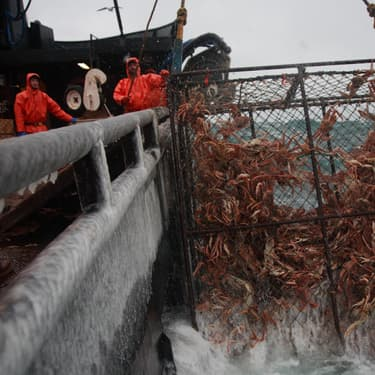 Péril en haute mer : la saison 17 arrive sur Discovery