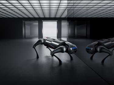 Xiaomi présente son... chien-robot