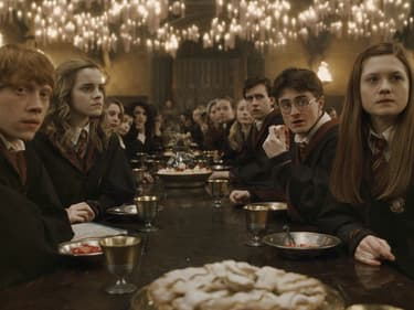 La saga de la semaine en VOD : Harry Potter