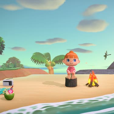 Animal Crossing : New Horizons, un allié pendant le confinement.