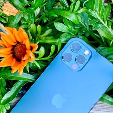 Notre test des capacités photo de l'iPhone 12 Pro
