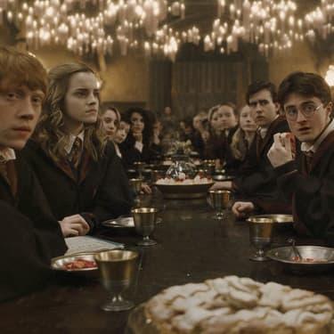La saga de la semaine en VOD : Harry Potter