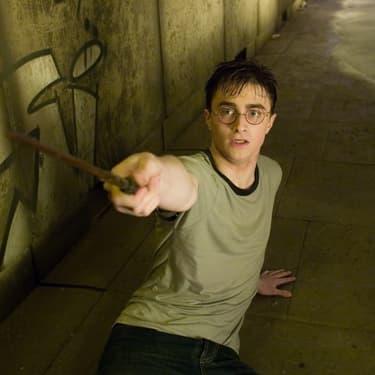 Le célèbre sorcier Harry Potter.