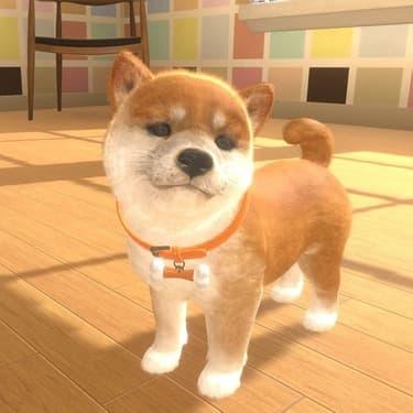 Little Friends Cats & Dogs : des animaux virtuels qui ne perdent pas leurs poils