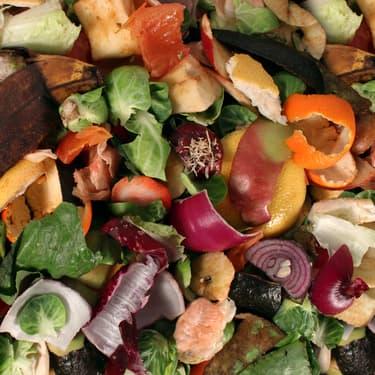 Transformer ses déchets alimentaires en énergie, grâce à la technologie, c'est possible.