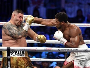 Boxe : Andy Ruiz s'est laissé trahir par la célébrité