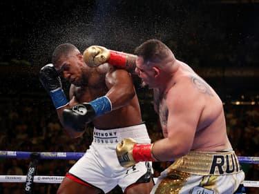 Boxe : Anthony Joshua et Andy Ruiz prêts pour leur grande revanche