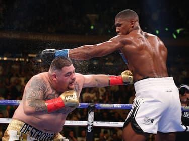 Boxe : Joshua v Ruiz, l'heure de la revanche