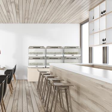 Growberry, une innovation permettant de cultiver un potager en intérieur grâce à une technologie reproduisant des conditions atmosphériques idéales, au salon Viva Technology 2019.