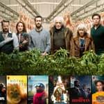 Comment trouver les catégories secrètes sur Netflix ?