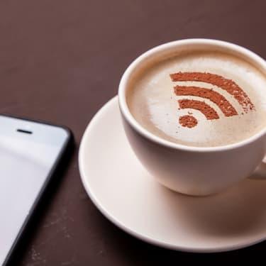 Le wifi ou la wifi, telle est la question...